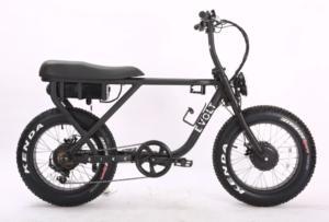 Evolt Bike test
